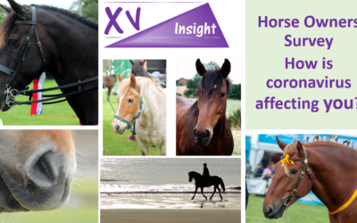 XV Insight Coronavirus – Horse Owner Survey Week 2 Results